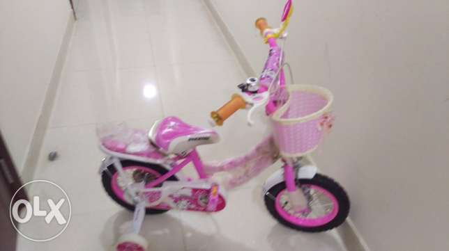Bicycle and Rider for Girls
