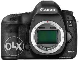 6 months old Canon 5D Mark iii Body