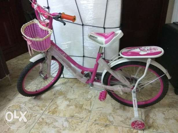RO 18 Very Good Condition Girl Cycle age 8-11 Years