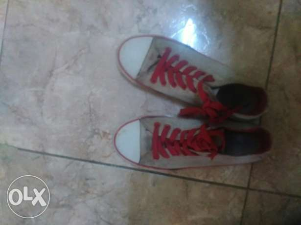 Canvius shoe for sale