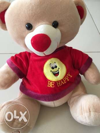 Juniors Teddy Bear, very good condition,40cm lengths