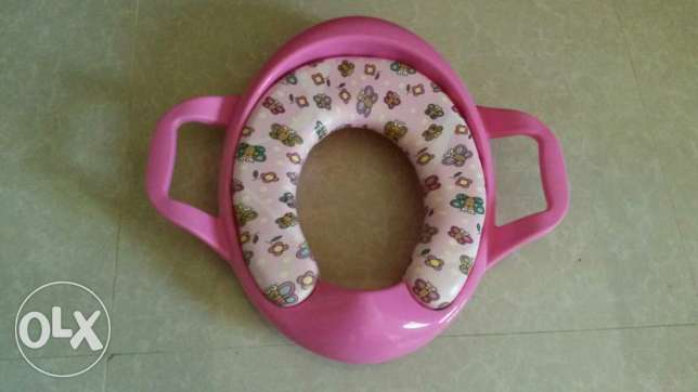 Potty training apparatus