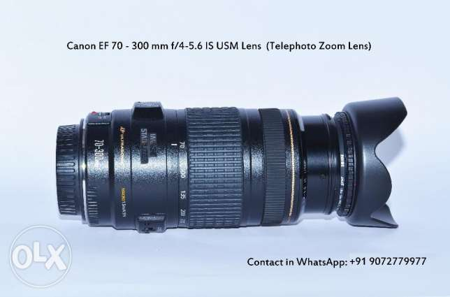 Canon EF 70 - 300 mm f/4-5.6 IS USM Lens (Telephoto Zoom Lens)