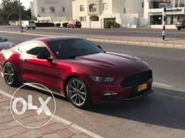 ARGENT Sale Ford Mustang GT 5.0 // 2016 Special offer for 5 days 15800