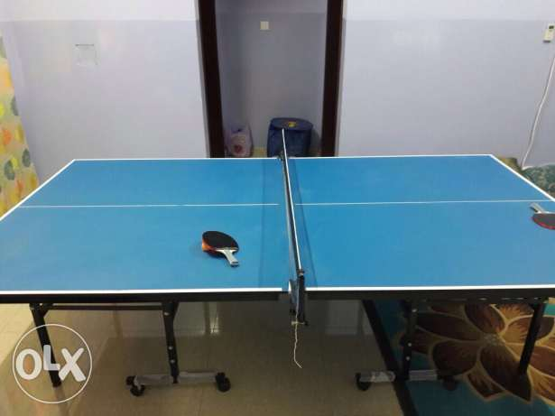 Fitness Lord Germany made Table Tennis Table (Rarely used)
