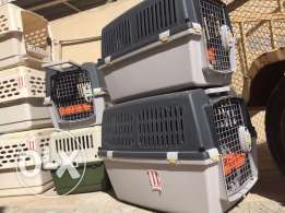 cage for sale with best price اقفاص للبيع