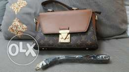 Two AAA copy of beautiful SMALL hand bags.GUCCI AND LV