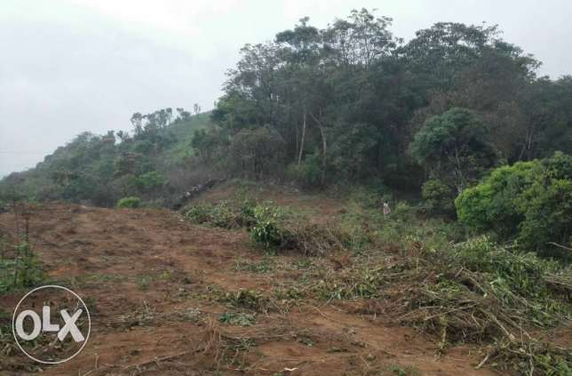 Excellent View Point Plot for Sale At KUTTYKAANAM