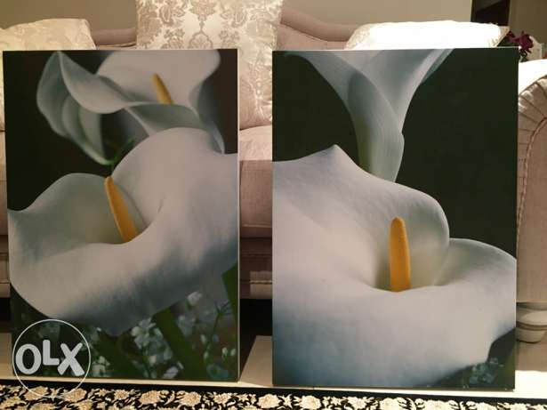 Wall pictures (2 pcs) - 15 ro