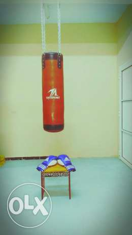 Boxing Pack and Boxing Gloves