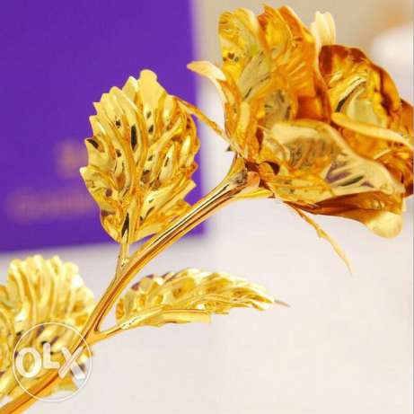 golden rose 24k السيب -  2