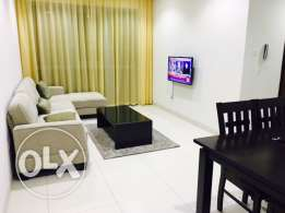 furnished one bedroom apartments for flexable lease