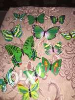 butterflies for decoration
