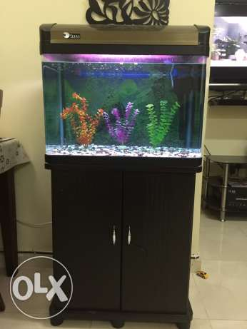 Fish Tank with Table مسقط -  1