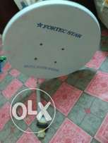 Dish TV antenna