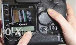 Canon 1D professional