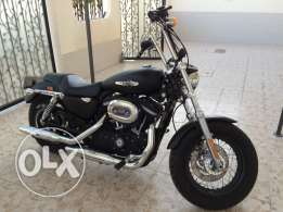 Harley sportster 1200 xl model 2013 with Harley