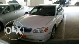 Maxima 2003 for buying or Renting