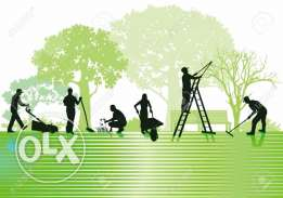 5 gardeners with gardener visa and one Agriculture Engineer available