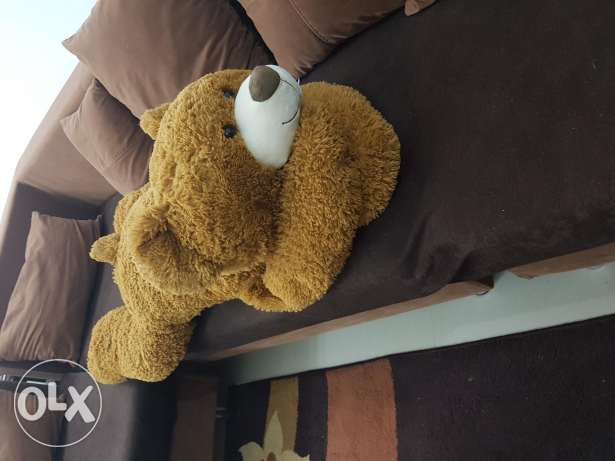 Teddy bear toy and decoration