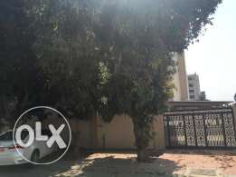 commercial villa for rent in al ozaiba