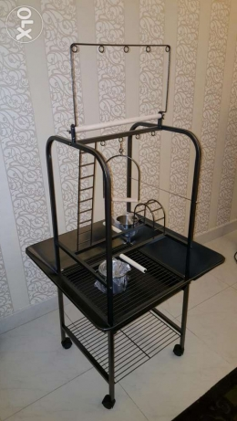 A New 150 cm High Parrot Playstand Holds Multiple Toys and Treats.