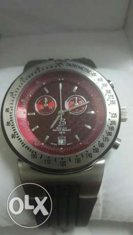 Men's Special Swiss Watch (Brizo)