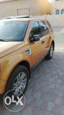 LR2 for sale in sheep price 2100