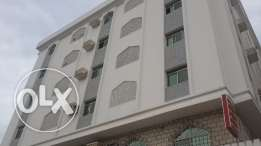 Big 1 BHK Appartment for rent in Wadi Adai Round About opp Al Nahda
