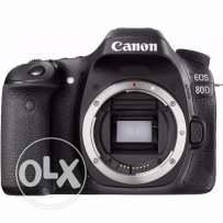 NEW Canon 80D with Tamron 18-200mm Di II VC