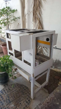 Wooden Cage With Breeding Boxes For Big and Small Birds and Parrots