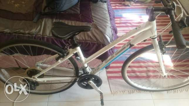 Fuji Lady's Road Bicycle, Absolute 2.3, size 26