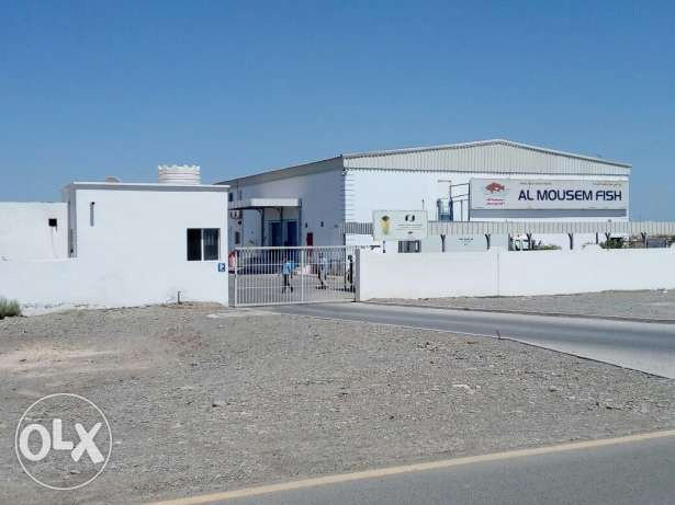 Sohar Factory for fishes