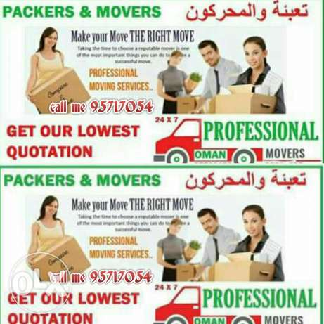 Professional Happy MOVERS fixing furniture . professional carpenter
