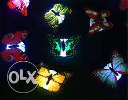 led colour changing butterfly- 4 pieces