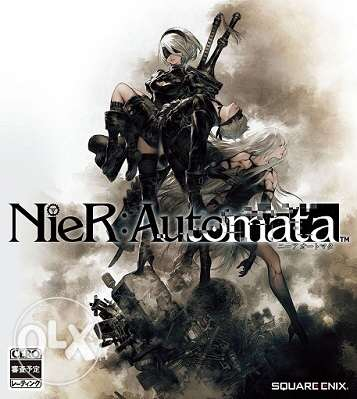 looking for NieR automata