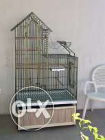 Big bird cage ideal for Amazon grey