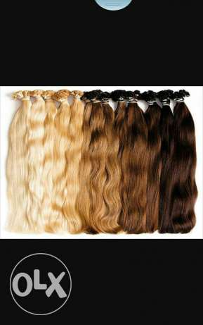 Original human hair extensions. مسقط -  7