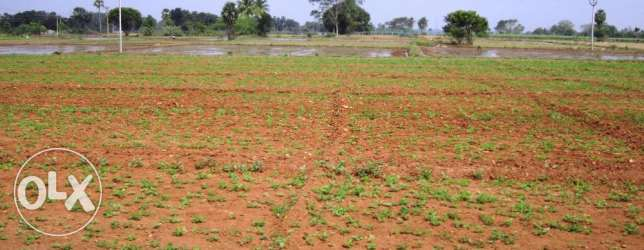 Wanted agricultural land for Rent