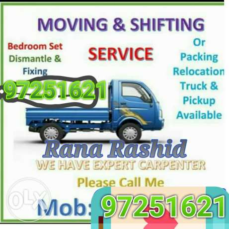 Professionals movers