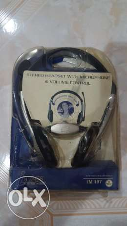 Stereo Headset with microphone and volume control – New