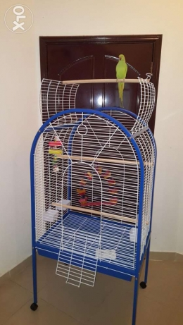Brand New Large Open-top Parrot Cage 1.7 m High
