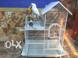 Birds Big Cage for sale ( Only Cage ) sale in wadi kabir