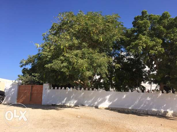 House in Sur city (AlBar) near Desalination station for sale