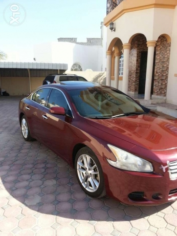 Car for sale maxima urgent sale 2013 السيب -  1