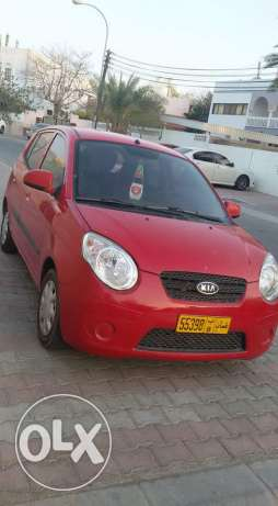picanto 2010 like new السيب -  2