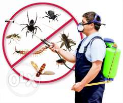 Pest control with guarantee non smelly medicine for in