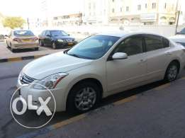 Nissan ALTEMA 2011 Gcc space No Accident histor Neat and Clean car