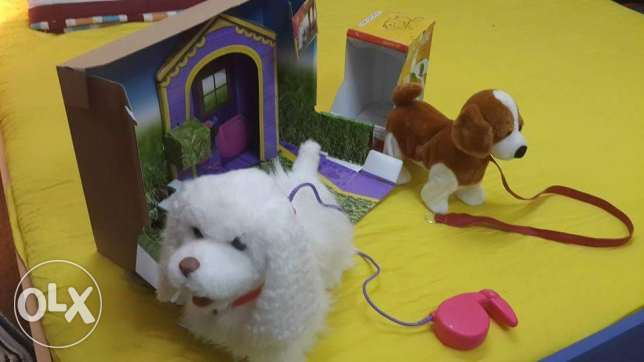 Elc white dog & Browny مسقط -  2