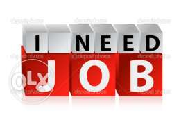 Urgently need job as Coordinator / Graphic Designer / Manager
